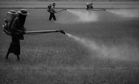 5 Chinese Stocks Into Herbicide